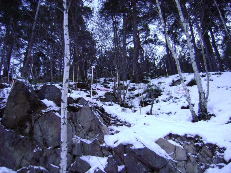 Ryssbergen0129-plockepinn