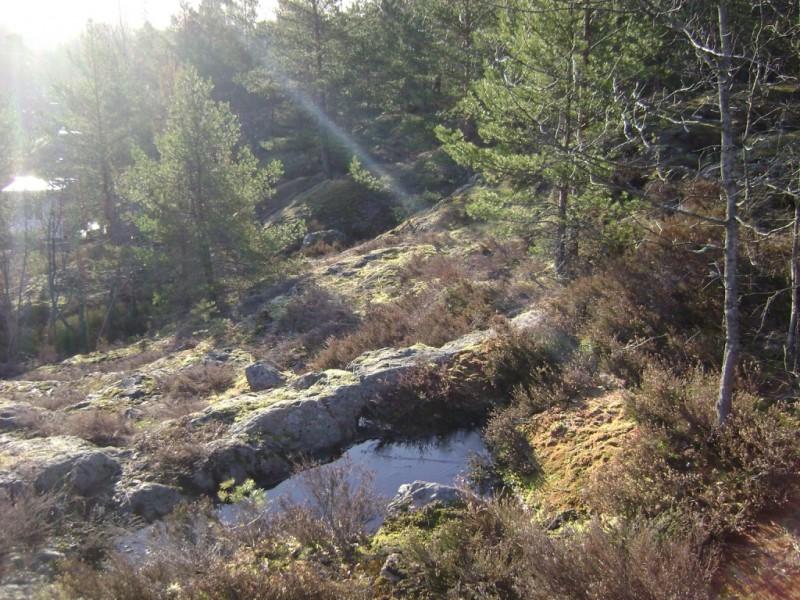 Ryssbergen0415-morgonljus