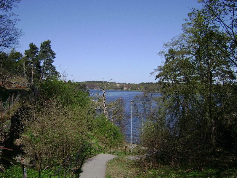 Ryssbergen0430-vikdalstrappan