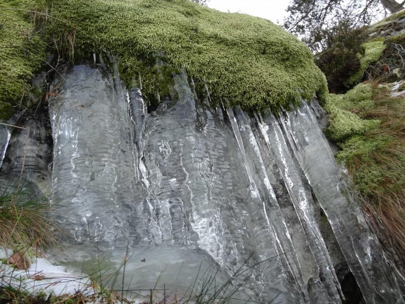 Ryssbergen0115-isigare